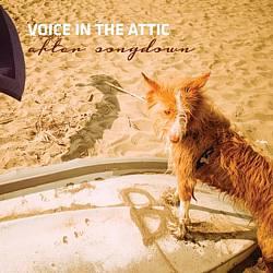 Voice In The Attic